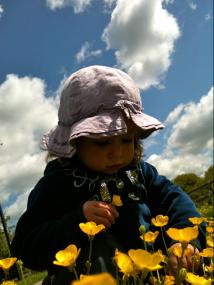 Alíz virágot szed - Coldhams Common Cambridge